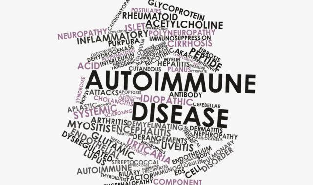 maladie auto immune